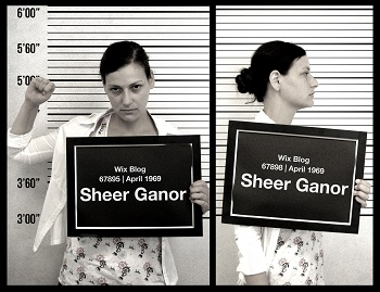 Sheer Ganor