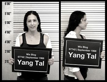 Yang Tal
