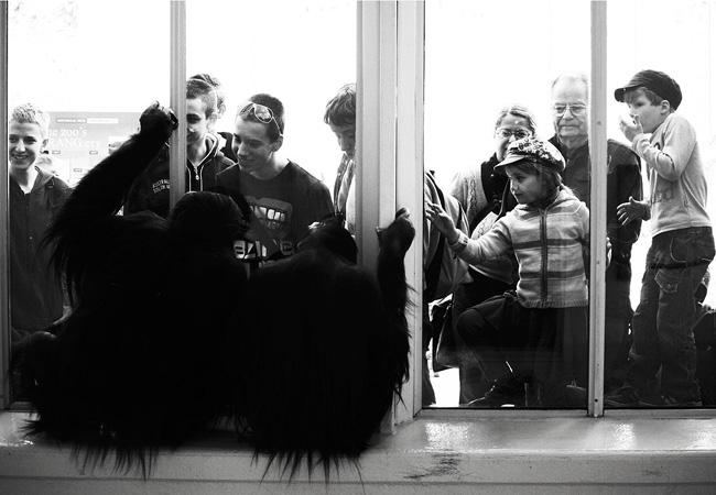 5 Photographes brillants à ne pas manquer
