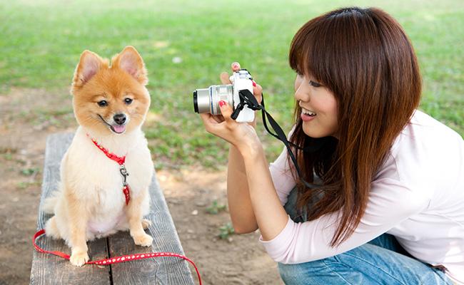 10 Conseils Pour Photographier Comme un Pro