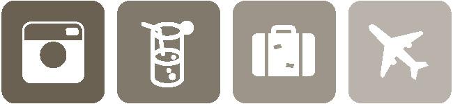 icône Intsagram