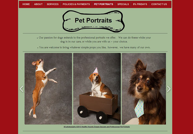 Site: Healthy Hounds Dogwalk