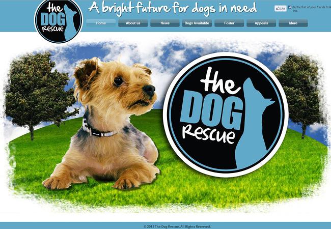 Site: The Dog Rescue