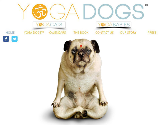 Site: Yoga Dogs