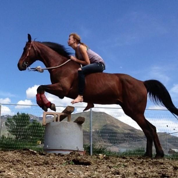 Femme sur un cheval qui saute