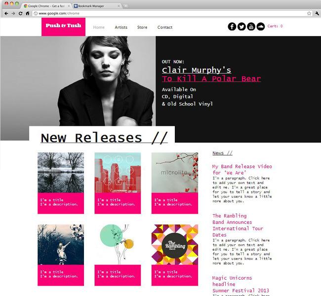 Capture d'écran du template Record Label