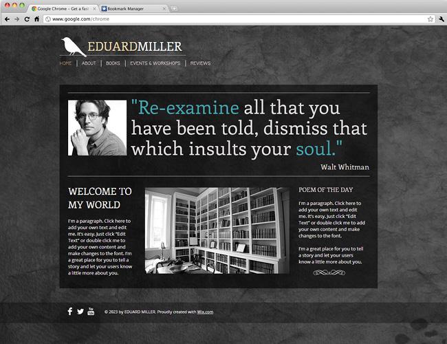 Capture d'écran du template The Poet