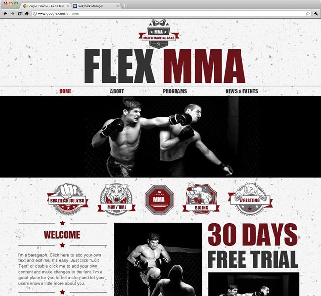Capture d'écran du template Mixed Martial Arts