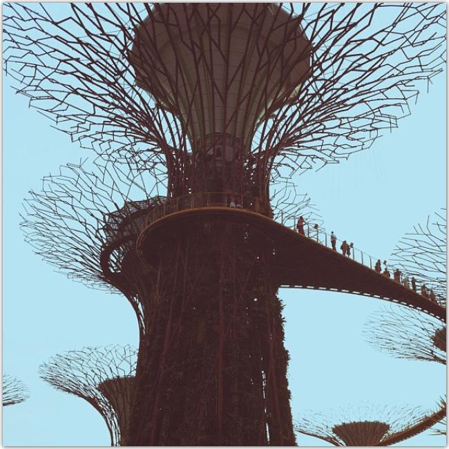Photo d'un monument en forme d'arbre