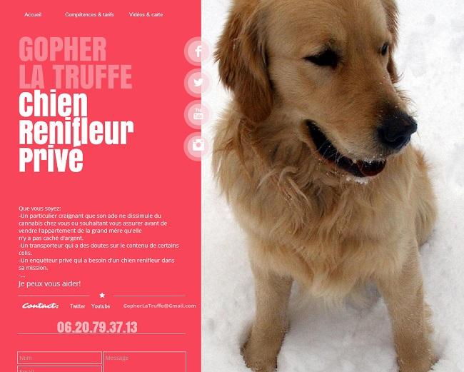 Gopher La Truffe  chien renifleur privé.