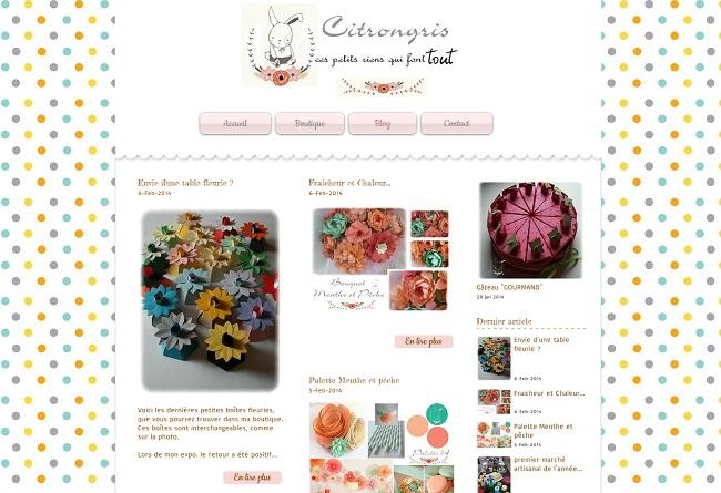 Citrongris présente un joli blog