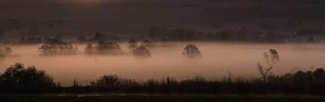 Paysage dans la brume