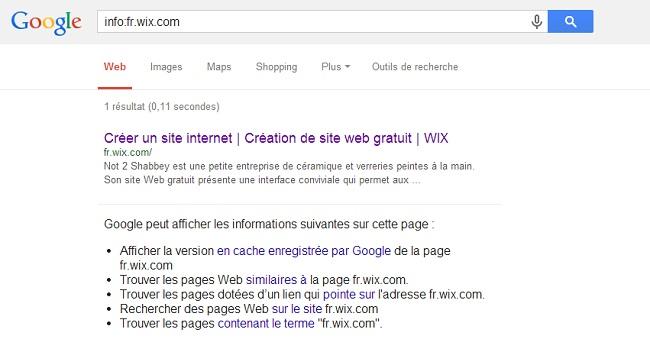 Recherche Google avec la mention info: