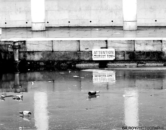 Gil Roy Photographe   Dans le silence du bruit