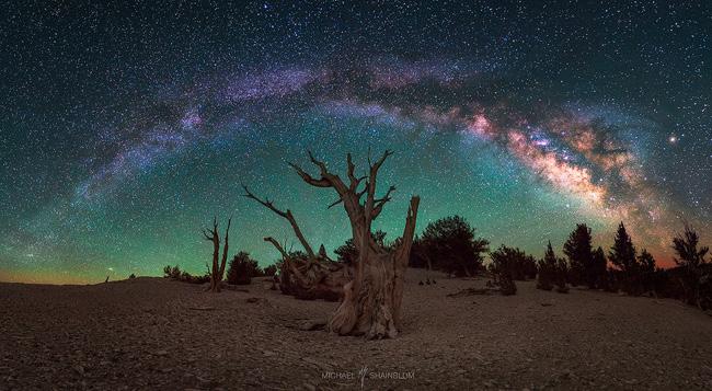 Milkyway in California par Michael Shainblum
