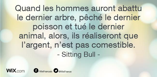 « Quand les hommes auront abattu le dernier arbre, pêché le dernier poisson et tué le dernier  animal, alors, ils réaliseront que l'argent, n'est pas comestible. »   Sitting Bull