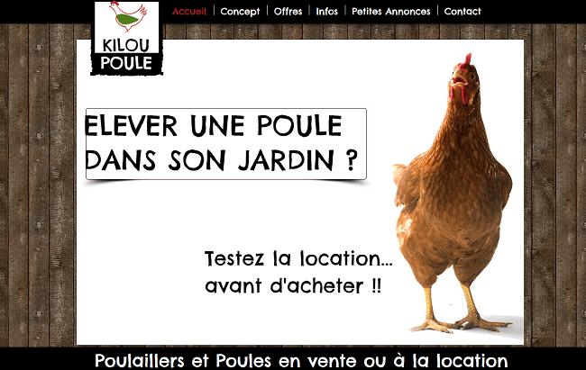 Poulaillers et Poules pondeuses en vente ou en location