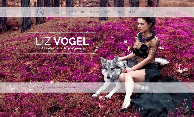 Liz Vogel Photography
