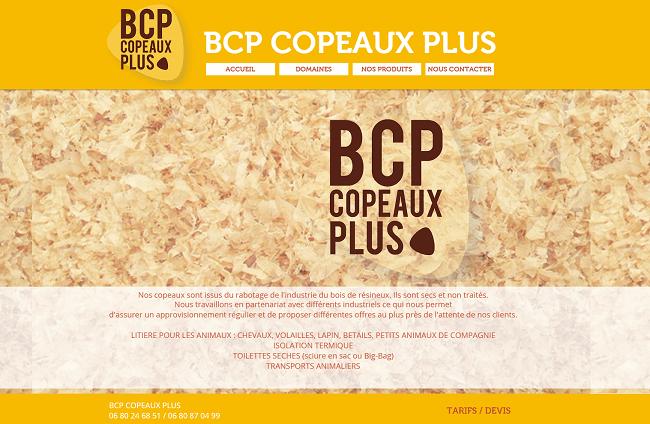 BCP COPEAUX PLUS ACCUEIL   SUD OUEST