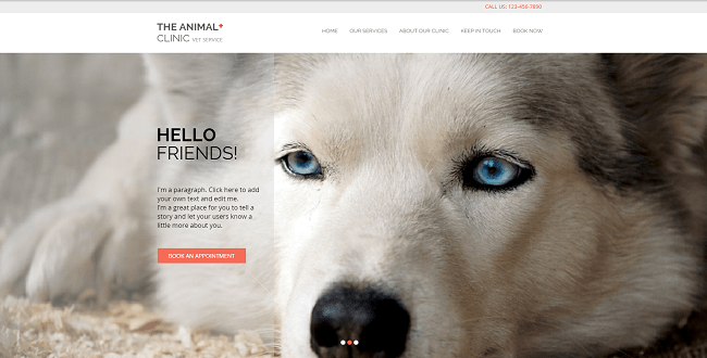 Animal Clinic Template de Site   WIX