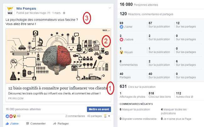 Publication Wix Facebook 12 biais cognitifs