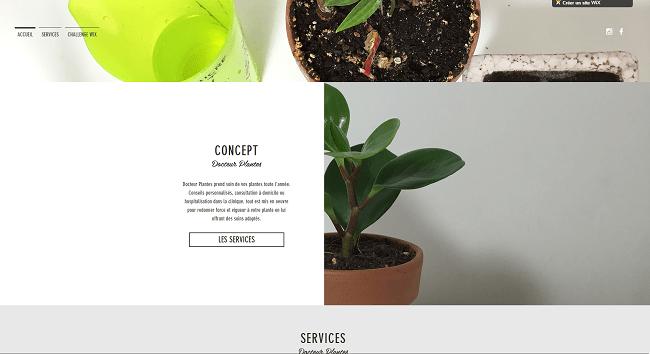 Docteur Plantes projet Wix Challenge finaliste