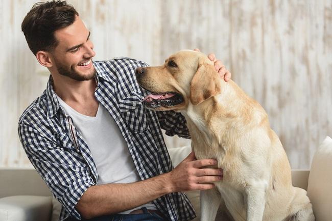 homme avec son labrador