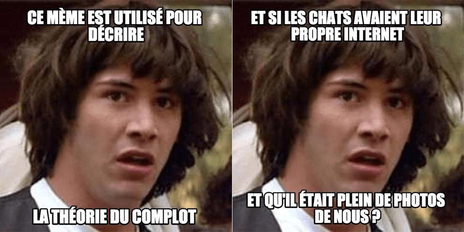 Mème : la conspiration